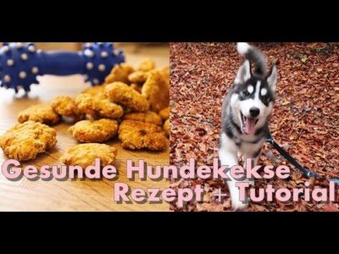 DIY Gesunde und einfache Hundekekse für jeden Hund // Husky Kenji☆ I ellylicious ♡