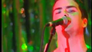 Stereophonics   Carrot cake and wine   Live At Cardiff Castle '98