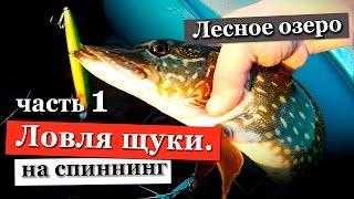 Отчет о рыбалки в ленинградской области