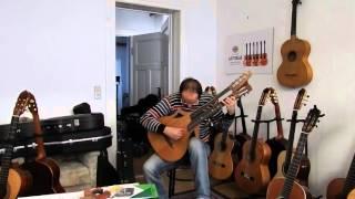 Weißgerber Konzertgitarre in Wappenform