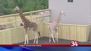 Animal Adventure Opens