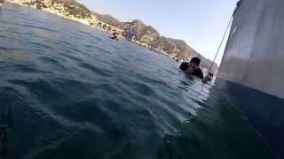 preview picture of video 'Apnee niolon 2014'