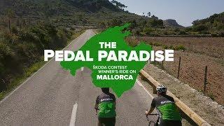 The Pedal Paradise