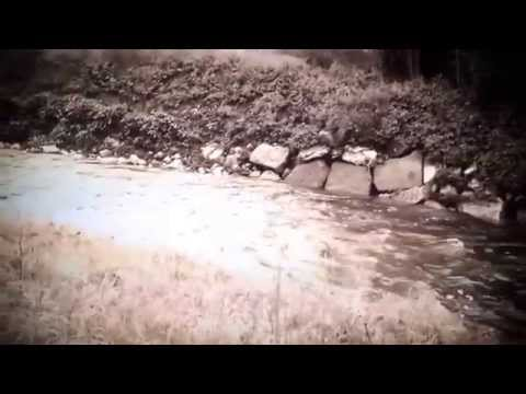 b:folk video preview