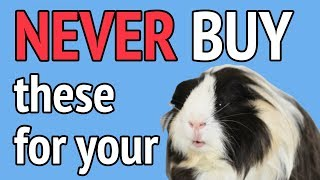 NEVER Buy These For Your Guinea Pig! DANGEROUS Items That People Dont Know About!