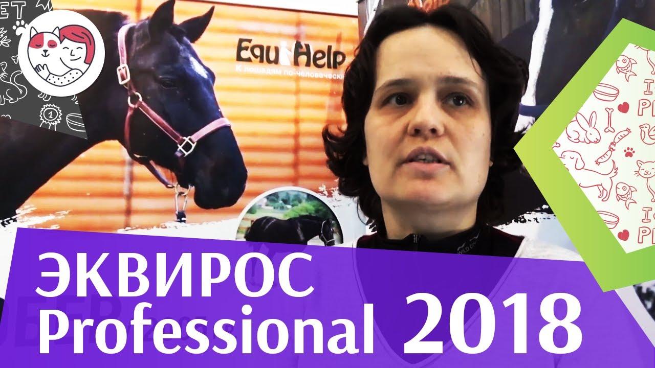 Эквирос Professional 2018 на ilikepet