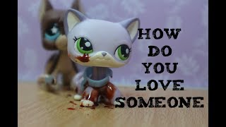 LPS~How Do You Love Someone -  Ashley Tisdale