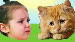 НОВЫЙ КРАСНЫЙ ШАР МИСС КЕЙТИ спасает кошечку Мурку, мультик игра Детский летсплей серия 3