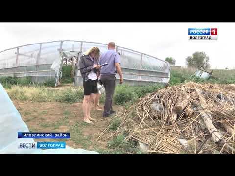О выявлении захламления земель сельскохозяйственного назначения в Волгоградской области