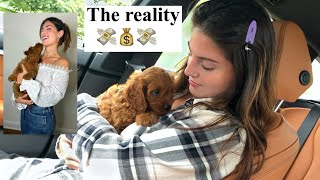 Bringing Home My New Puppy + Our First 2 Weeks Together!