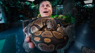 MY SECOND SNAKE I EVER OWNED DIED!! 30 YEARS OF REPTILES!! WHAT'S DIFFERENT NOW? | BRIAN BARCZYK