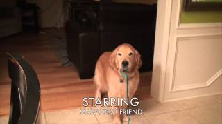 Adorable Dog Reaction: Coming Home From College