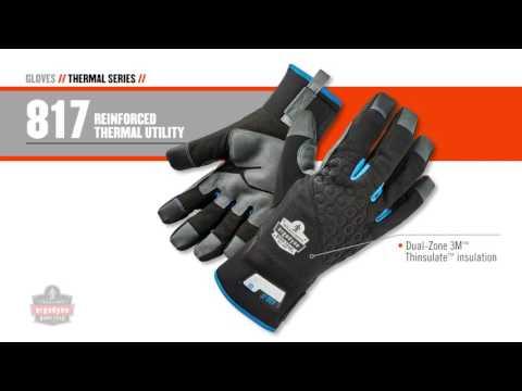 Ergodyne Winter Work Gloves Waterproof, Warm and Dexterity - Ohio Power Tool