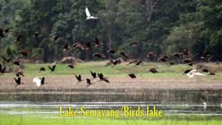 Exploring Kalimantan,Indonesia