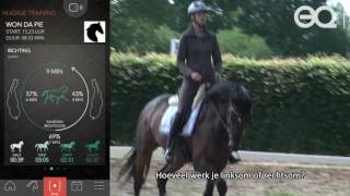 Equestic SaddleClip Trainingssensor voor Paarden
