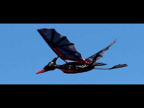 Rocsky Technology's RC Pterodactyl sold by HobbyKing