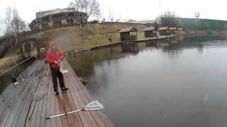 Золотой сазан рыбалка на новой риге