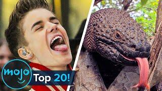 Top 20 Crazy Celebrity Conspiracy Theories