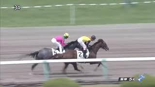 2018/04/08阪神5R3歳500万下マイネルオスカル