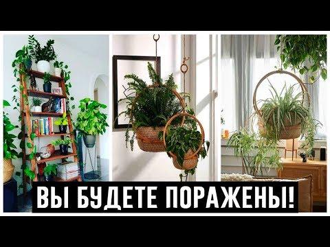Пространство под цветы в квартире: оригинальные идеи, достойные внимания!