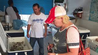 Where to Get Shrimp in Rocky Point Mexico