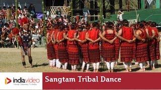 Sangtam tribal dance of Nagaland