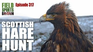 Fieldsports Britain – Scottish hare hunt with eagles
