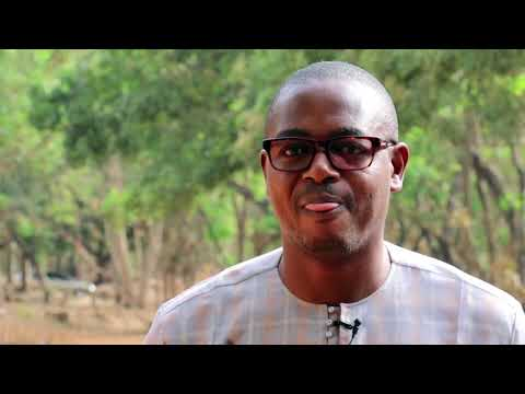 « Transformer et commercialiser l'anacarde : un projet édifiant d'Enabel au Bénin »