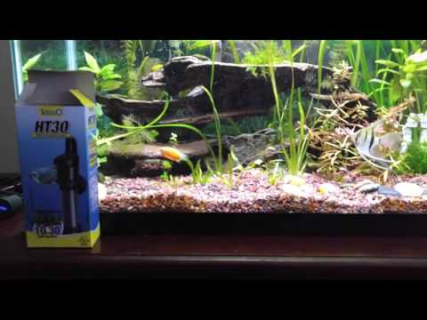 Tetra HT30 Aquarium Heater Review
