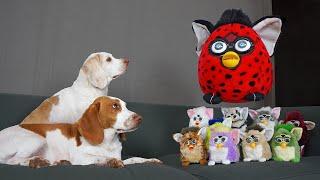 Dogs vs Giant Furby Prank! Funny Dogs vs Furbies Invasion Pranks