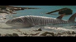 Prehistoric world (Доисторический мир) 1 часть
