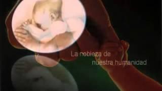 Nabuco de Verdi  . Canto a la Libertad