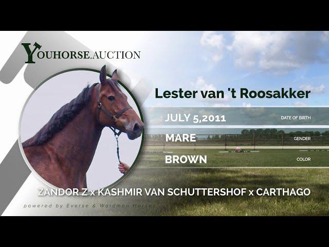 Lester van 't Roosakker