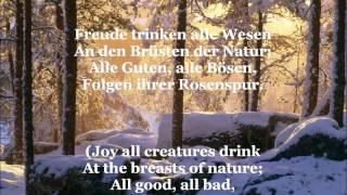 Ode an die Freude - Song Of Joy (with German lyrics & English translation)