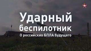 Ударный БПЛА необходим: разработчик о будущем российских беспилотников