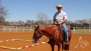 Horse Training - Trail with Will Knabenshue  Performing the Cloverleaf Exercise