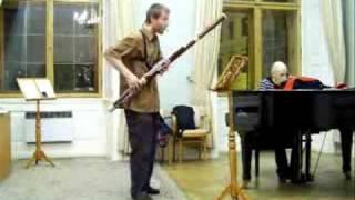 Video Baroko