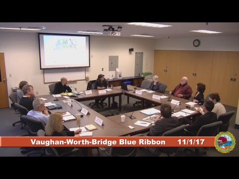 Vaughan-Worth-Bridge Blue Ribbon Committee 11.1.17