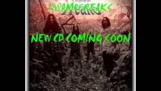 swampfreaks, new album,featuring, andrew mcdermott ,mac from threshold