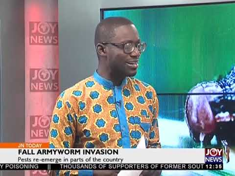 Fall Armyworm Invasion - Joy News Today (6-4-18)