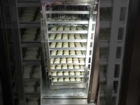 2400 Multi Tray Bakery Oven