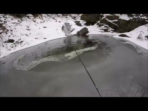 Russo che pesca in 2 labynkyr bulltrout