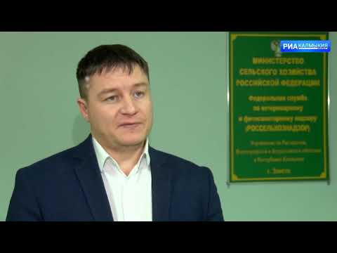Более 500 тонн животноводческой продукции экспортировано из Республики Калмыкия под контролем Управления Россельхознадзора в 2020 году
