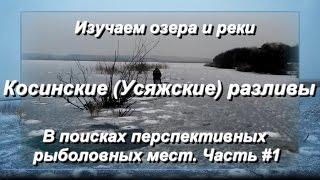 Отчет о рыбалке в минской области