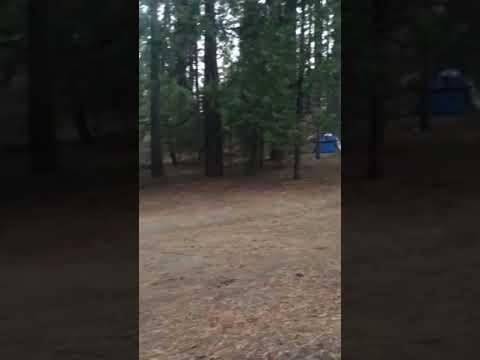 Video Of Wawona - Yosemite National Park, CA
