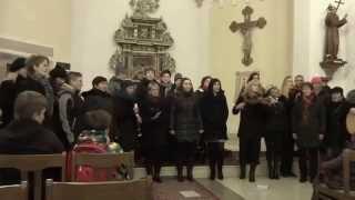 Video Rozsvěcení vánočního stromu v Podmoklech