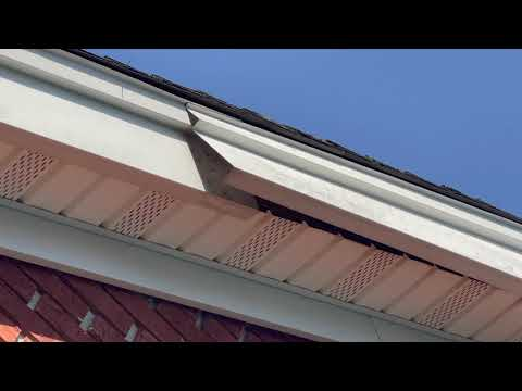 Keep an Eye Out for Damaged Soffits