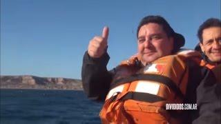 DIVIDIDOS - ¿Qué Tal? Puerto Madryn 19/06/2016