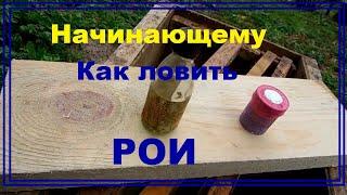 Как пользоваться апироем при ловле роя