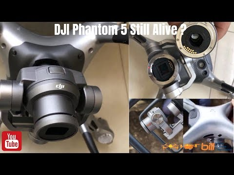 dji-phantom-5-alive-